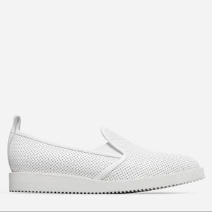 Everlane | White Pointed Perforated Street Shoes
